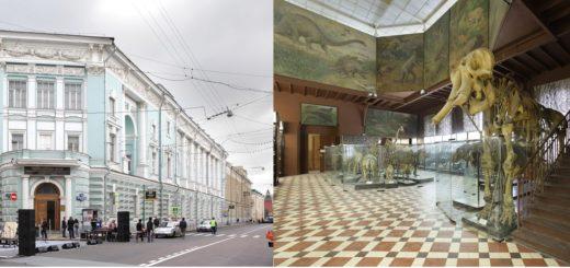 оолгический музей МГУ имени М. В. Ломоносова