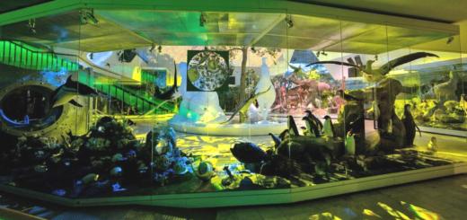 Фестиваль науки 2021 в Дарвиновском музее